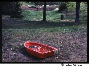 Thumbnail of Toy boat filled with water with garden in the background, Tree Frog Farm commune