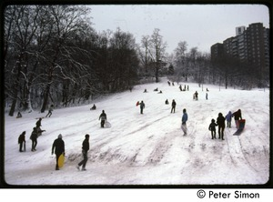 Thumbnail of Sledding after a heavy snow, Riverdale, N.Y.