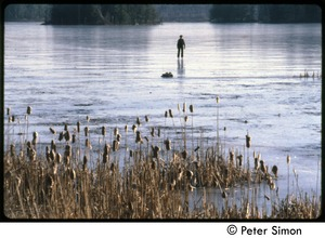 Thumbnail of Boy skating on a frozen pond with cattails in foreground