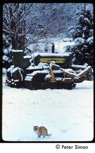 Thumbnail of Ginger cat and John Deere tractor in the snow
