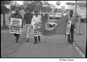 Thumbnail of UFOWC grape pickers strike at Stop and Shop: protestors walking holding banner and signs