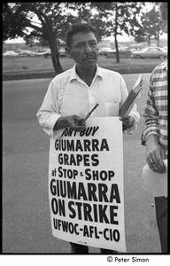 Thumbnail of UFOWC grape pickers strike at Stop and Shop: protestor wearing sign and holding a corn cob pipe, BU News reporter Paul Trowbridge out of frame