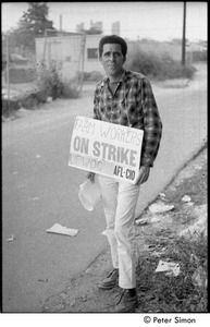 Thumbnail of UFOWC grape pickers strike at Stop and Shop: protestor standing by a road and wearing sign reading, 'Farm Workers on Strike'