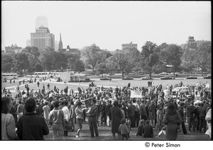Thumbnail of Resistance rally: demonstrators gathering on Boston Common