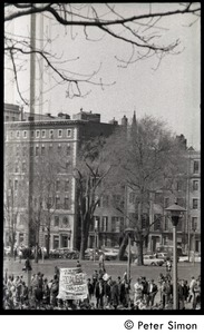 Thumbnail of Resistance on the Boston Common: crowd gathered on north edge of the Common