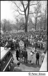 Thumbnail of Marchers commemorating Martin Luther King, Boston Common, gathered below the             State House Marcher holding placard reading 'Get white cops out of Roxbury'