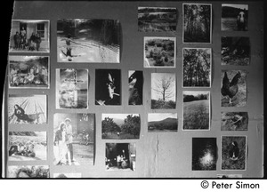 Thumbnail of Wall of photographs, Packer Corners commune