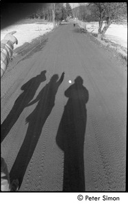 Thumbnail of Casting shadows on a dirt road, Packer Corners commune