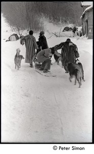 Thumbnail of Fritz Hewitt, Catherine Blinder, unidentified man, and Marcia Braun (l. to r.) walking             through the snow with dogs, Tree Frog Farm commune