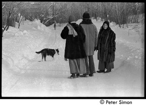 Thumbnail of Catherine Blinder, Elliot Blinder, and Marcia Braun (l. to r.) walking down a snowy road, Tree Frog Farm commune