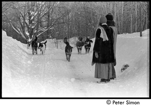 Thumbnail of Catherine Blinder, Elliot Blinder, Marcia Braun, and dogs walking down a snowy road, Tree Frog Farm commune
