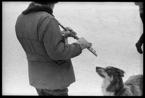 Thumbnail of Dog staring at a man playing the flute during a protest against the invasion of Laos at the Vermont             State Capitol