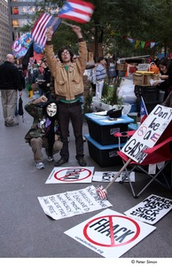 Thumbnail of Occupy Wall Street: demonstrator in a Guy Fawkes mask raising his fist next to a demonstrator raising American and Puerto Rican flags