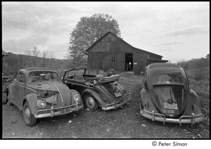 Thumbnail of Three Volkswagen Beetles in front of a barn