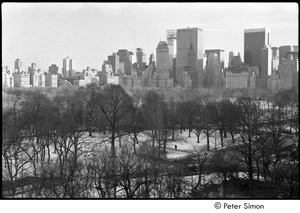 Thumbnail of Central Park in winter