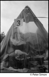 Thumbnail of Clear plastic tent in the rain, filled with clothing, at Resurrection City