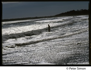 Thumbnail of Woman standing in the surf in silhouette, Marthas Vineyard