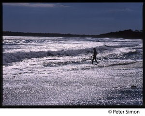 Thumbnail of Woman striding in the surf in silhouette, Marthas Vineyard