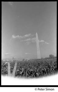 Thumbnail of Flashing a peace sign above the crowd, with Washington Monument in the             background: Vietnam Moratorium march on Washington
