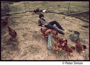 Thumbnail of Tim Rossner with hens at Tree Frog Farm commune