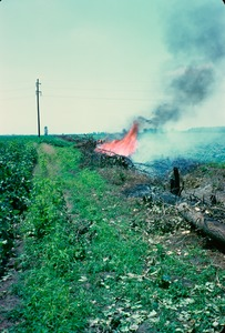 Thumbnail of Burning brush in ditch on edge of field, Circle City, Missouri