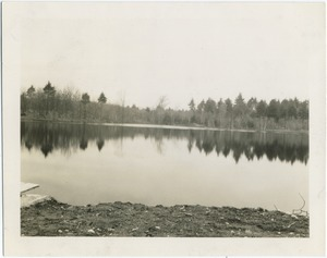 Thumbnail of Number 3 Pond finished, Harold Parker State Forest