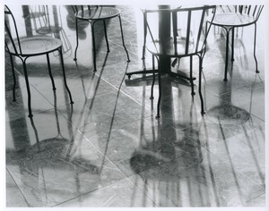 Thumbnail of Winter garden, shadows and reflections