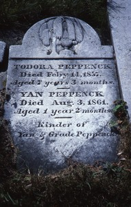 Thumbnail of Albany Rural Cemetery (Menands, N.Y.) gravestone: Peppenck children