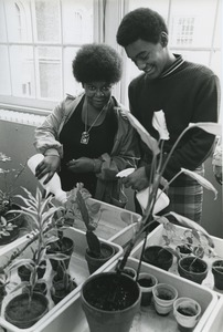 Thumbnail of Students caring for plants at Brooklyn Occupational Training Center