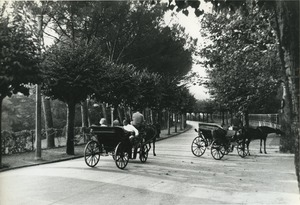 Thumbnail of Horse-drawn carriages