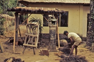 Thumbnail of Man preparing thatch for roof
