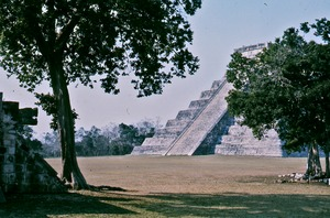 Thumbnail of Trees and pyramids