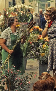Thumbnail of Flower vendors