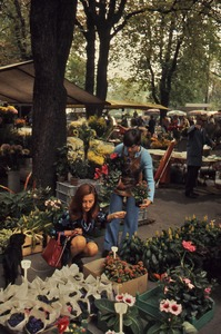 Thumbnail of Young woman choosing flowers
