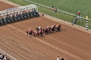 Thumbnail of Horses taking off from the starting gate