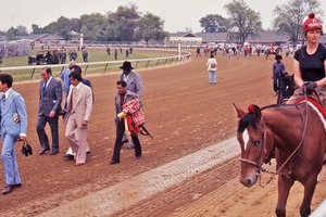 Thumbnail of Horse walking on the track