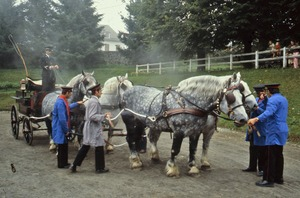 Thumbnail of Carriage and draft horses in harness