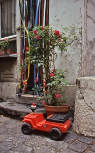 Thumbnail of Toy and roses by a doorway
