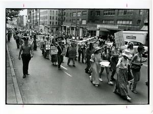 Thumbnail of Equal Rights Amendment  demonstrators