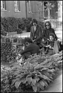 Thumbnail of The  Velvet Underground: (l.-r.) Doug Yule, Sterling Morrison, Maureen Tucker, and Lou Reed posing in a circle garden