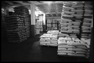 Thumbnail of Palettes loaded with sacks of kasha, sea salt, and other goods at Erewhon Trading             Company