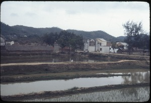Thumbnail of Foshan: paddy, pond, commune, hills, afforestation