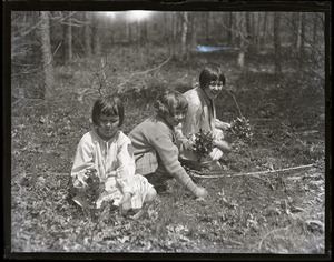 Thumbnail of Children with mayflowers