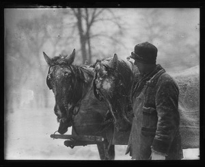 Thumbnail of Man leading a horse team in snow
