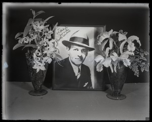 Thumbnail of Walter Winchell with orchid display: portrait of Winchell set between orchids          (Dendrobium sp. and Cattleya labiata, l. to r.)