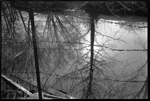 Thumbnail of View of a stream through barbed wire