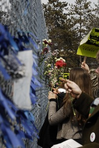 Thumbnail of Justice for Jason rally at UMass Amherst: protesters in support of Jason             Vassell placing flowers in a chain link fence