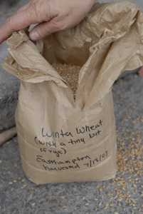 Thumbnail of Hungry Ghost Bread: a bag of locally-grown grain (winter wheat and rye) used at the bakery