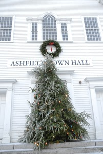Thumbnail of Christmas tree and wreath in front of Ashfield town halls