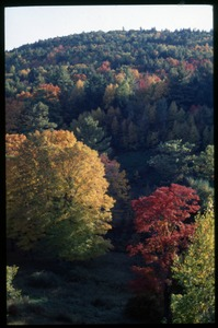 Thumbnail of Autumn view of trees and hills, Montague Farm commune